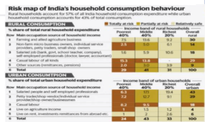 Risk Map Occupation X Income Group X Consumption Weight